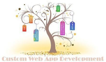 Custom Web Application Development - Why Essential For Online Business! | Web Design-Development Tricks & Tips | Scoop.it