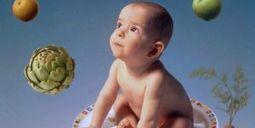 Vrai ou faux : il y a des OGM dans les aliments pour bébés - Metro France | OGM et environnement | Scoop.it