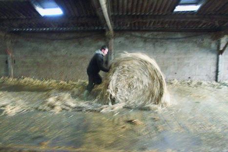 Quel avenir pour l'agriculture? - La Croix | Le Fil @gricole | Scoop.it