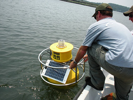 Impaired Ecosystem Water Quality Monitoring in Mount Hope Bay | Water quality | Scoop.it