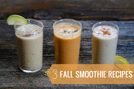 3 Healthy Recipes for Fall Smoothies   fitness   Scoop.it