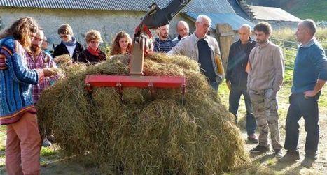 Vallée de Campan : le séchage en grange  pour un foin de qualité | Vallée d'Aure - Pyrénées | Scoop.it