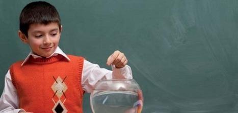 ENCIENDE: Enseñanza de las Ciencias en la Didáctica Escolar | Blog de CNIIE | Educacion, ecologia y TIC | Scoop.it