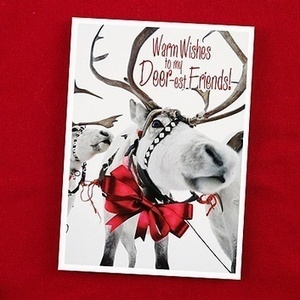 Holiday Cards - Holiday Photo Cards - Christmas Cards - Occasions In Print | Weddings | Scoop.it