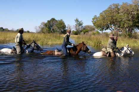 Congratulations!! - Equitrekking Wins Daytime Emmy Award - Our Trips Featured! | Equestrian Vacations | Scoop.it