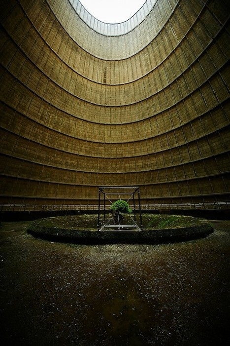 A Suspended Bonsai Inside an Abandoned Power Plant | SCULPTURES | Scoop.it