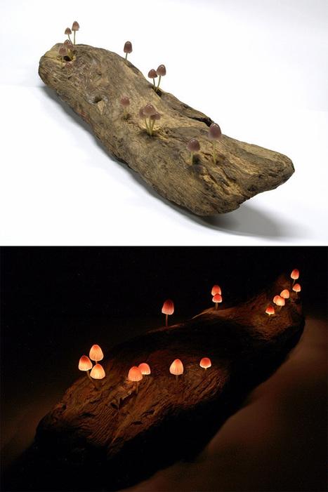 blaze! » Nature-Inspired LED Lamps   Lighting Ideas   Scoop.it