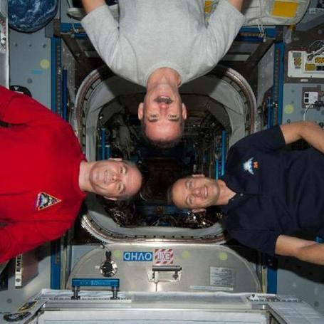 LIVE: Chris Hadfield and Fellow Astronauts on Google Hangout | The many ways authors are using Apple's iBooks Author and iBooks2 | Scoop.it