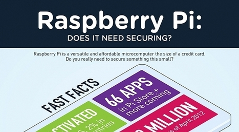 A Raspberry Pi Connected to the Internet Needs to Be Secured Against Threats – Infographic | Raspberry Pi | Scoop.it
