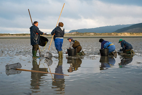 A day with the shellfish gatherers of the Costa da Morte   Fujifilm X System and Photography Travel   Scoop.it