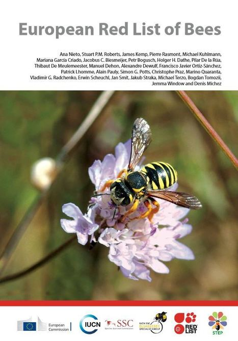 Liste rouge des abeilles sauvages d'Europe | Insect Archive | Scoop.it
