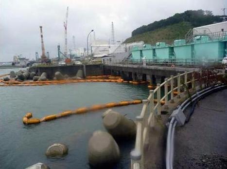 Fukushima: un bout de plastique probable cause de la panne | Sustain Our Earth | Scoop.it