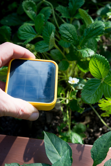 Garden Gadgets: The Solar-Powered Edyn Sensor Is Now Monitoring Our Raised Beds | The Horticult | Think Like a Permaculturist | Scoop.it