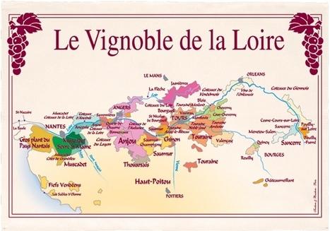 Savennières | Cavissima, consitution de cave Online - Savennières | Vins de Loire | Scoop.it