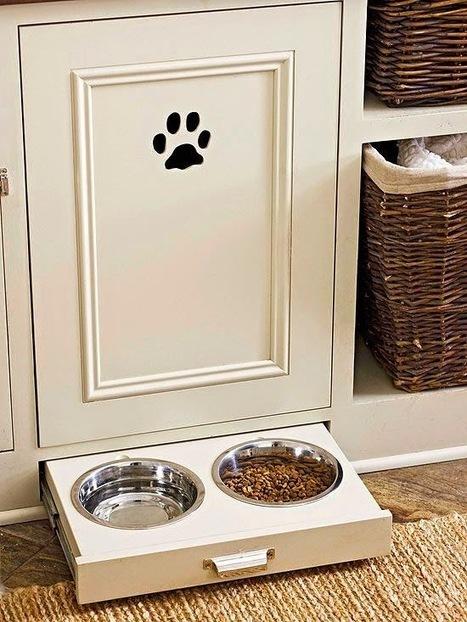 Aménager pour les animaux domestiques : astuces et déco | Astuces pratiques Déco | Scoop.it