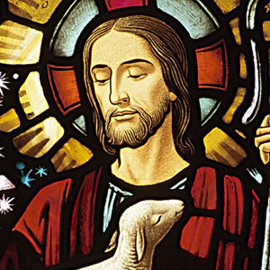 The Story of Jesus' Life   Exploring Significant People & Stories in Religion   Scoop.it