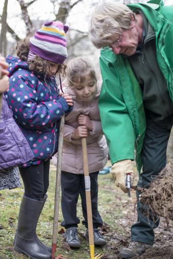 Un verger dans mon école : planter un pommier, mode d'emploi | Innovation sociale | Scoop.it