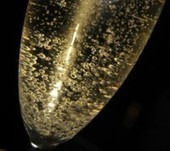 A champagne Q&A with San Francisco Master Sommelier David O'Connor.   Vitabella Wine Daily Gossip   Scoop.it