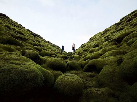 Mossy Lava Field Image, Iceland |National Geographic Photo of the Day | Vloasis awesome sauce | Scoop.it