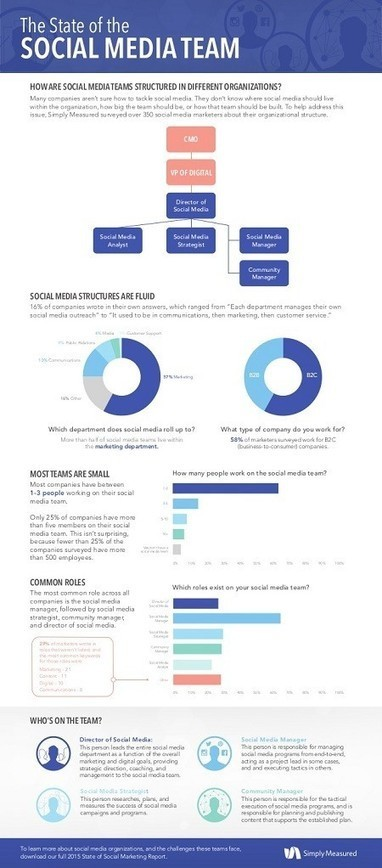 The State of the Social Media Team [Infographic] | Surviving Social Chaos | Scoop.it