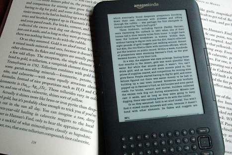 How Many eBooks Do You Have on Your Kindle? | The Digital Reader | Ebook and Publishing | Scoop.it