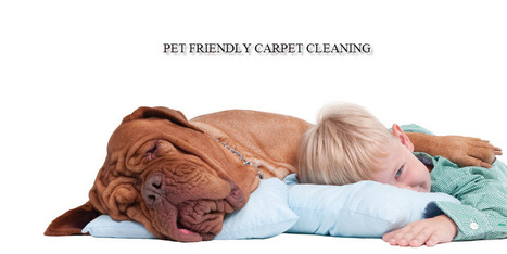 Selecting a fantastic Ottawa cleaning provider has never been easier owing to Enviropure House Cleaning Services.   mambolist   Scoop.it