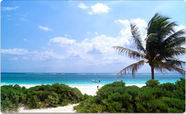 Mexico Real Estate News: Top 5 Reasons Mexico's Riviera Maya is Ideal for Expats | Mexico Real Estate | Scoop.it