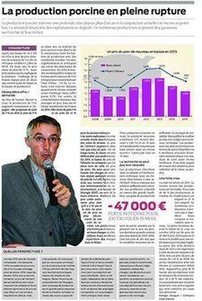 Georges Douguet, ingénieur études à... - CERFRANCE Côtes d'Armor | Facebook | Production porcine | Scoop.it