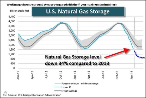 Natural Gas & Precious Metal Prices To Spike Higher In 2014 : SRSrocco Report | Commodities, Resource and Freedom | Scoop.it