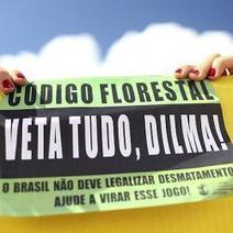 Vuelve el viejo debate: crecer o conservar   sustainability - business ethics essay   Scoop.it