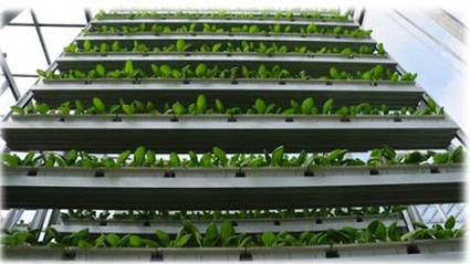 5 Examples of Creative Urban Agriculture From Around the World   Vertical Urban Agriculture   Scoop.it