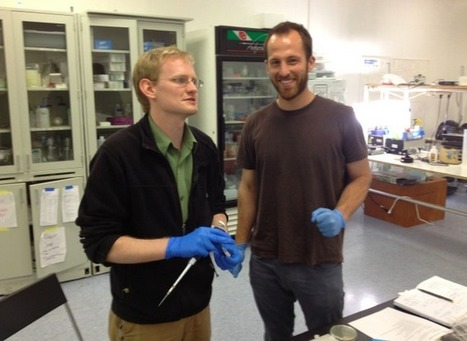 DIY Synthetic Biology: Making Your Own Glowing Plants | SynBioFromLeukipposInstitute | Scoop.it