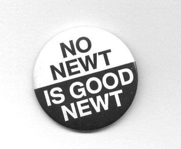 No Newt Is Good Newt | Dare To Be A Feminist | Scoop.it