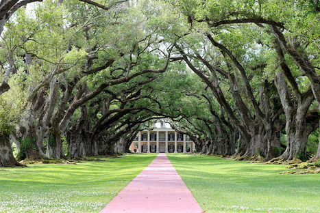 MRS. & the MOMMA: Into the Ocean | Oak Alley Plantation: Things to see! | Scoop.it