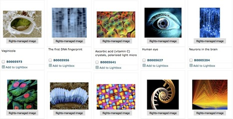 Wellcome Images | Tools for Teachers & Learners | Scoop.it
