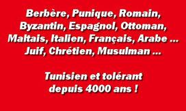 Humeurs mondialisées: Plaidoyer pour la Tunisie de toujours - Cri du coeur | Brèves de scoop | Scoop.it