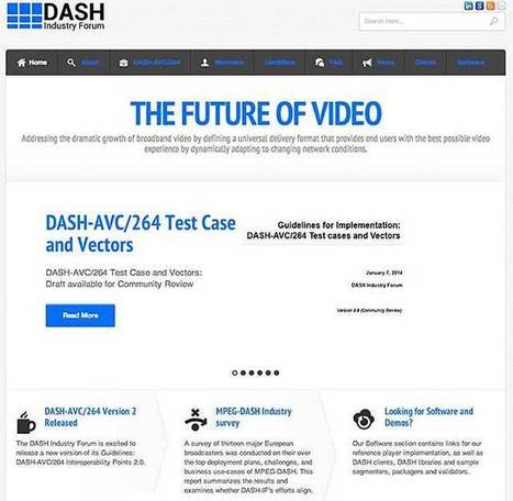 OnlineVideo : The State of Protocols and Formats 2014   Logan's Interest   Scoop.it