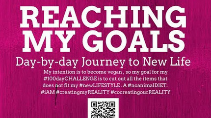 Today is #dayTWELVE of #my100dayCHALLENGE. This is my #eleventhUPDATE #video… | Reaching my Goals in LIFE | Scoop.it