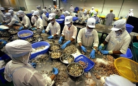 The Prawn Goodbye - A Mysterious Plague Is Wiping Out Shrimp ... | EMS disease | Scoop.it
