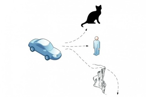 Of Cats And Cliffs: The Ethical Dilemmas Of The Driverless Car | NIC: Network, Information, and Computer | Scoop.it