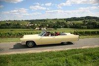 AOC Cadillac Côtes de Bordeaux, Portes ouvertes, dégustations vins, oenotourisme | Agritourisme et gastronomie | Scoop.it