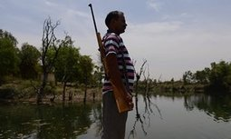 Armed guards at India's dams as drought grips country | Sustain Our Earth | Scoop.it