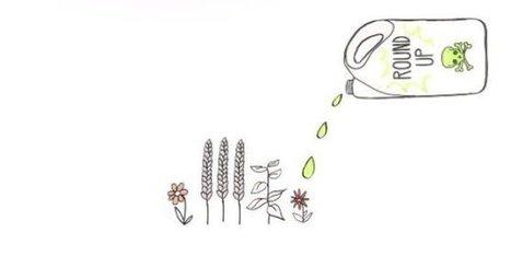 Cette vidéo contre le glyphosate rencontre un succès fou | Cosmétique - Bio - Well being | Scoop.it