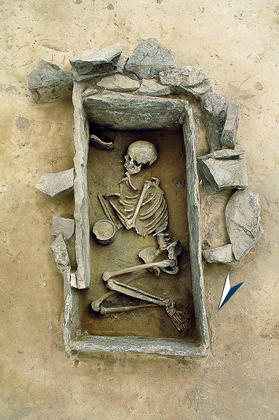 Ancient skeletons hold key to origins of language  - Archaeology | Bronze Age | Scoop.it