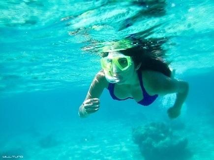 Is a Snorkel Guide Mandatory In Akumal? - Akumal Real Estate | www.iownakumal.com | Scoop.it