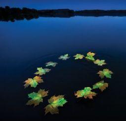 AEA: il water management alla base delle politiche Ue - Rinnovabili | Ambiente e Territorio | Scoop.it