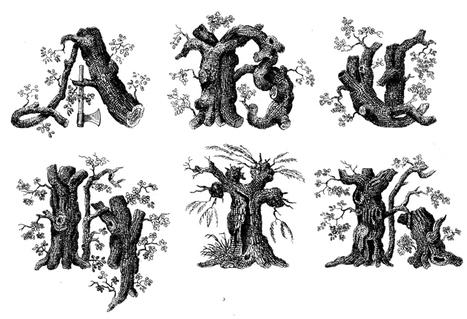 Art + Botany: 19th-Century Typography | Garden Design | Garden Libraries | Scoop.it
