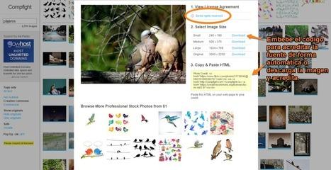 12 herramientas gratuitas para crear el contenido creativo visual perfecto - SocialBro | Tic en el aula | Scoop.it