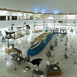 6 New Museums Open Today | Financial Tribune Daily | ICOM network news - Actualités du réseau de l'ICOM | Scoop.it