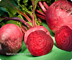 Improve your athletic performance naturally with beets: Research | Vegetarian and Vegan | Scoop.it